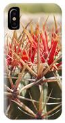 Little Cactus IPhone Case