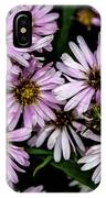 Little Green Bug Among The Flowers IPhone Case