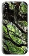Live Oak IPhone Case