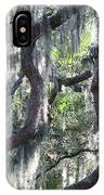 Live Oak With Spanish Moss And Palms IPhone Case