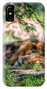 Living In Harmony - Lion IPhone Case
