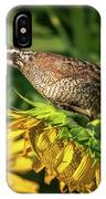 Living On Sunflowers IPhone Case