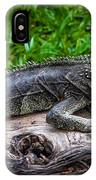 Lizard At The Zoo IPhone X Case