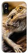 Lizard - Id 16217-202733-1873 IPhone Case