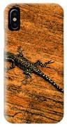 Lizard On Sandstone IPhone Case