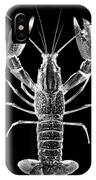 Crawfish In The Dark - Xray IPhone Case