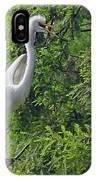 Lone Egret IPhone Case