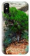 Lone Tree On A Cliff IPhone Case