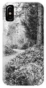 Long And Winding Path IPhone Case