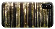 Longleaf Pine Forest IPhone Case