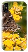 Longtailed Skipper Urbanus Proteus IPhone Case