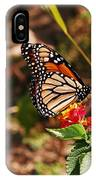 Looking For Nectar IPhone Case