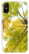 Looking Up At Fall IPhone Case