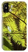 Looking Up To A Beautiful Sunglowing Fern In A Tropical Forest IPhone X Case