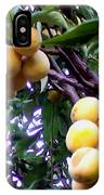 Loquats In The Tree 1 IPhone Case