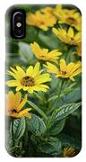Loraine Sunshine 2 IPhone Case