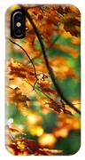 Lost In Leaves IPhone Case