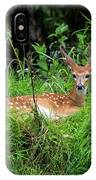 Lounging Fawn IPhone Case