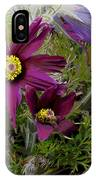 Love In The Spring IPhone Case