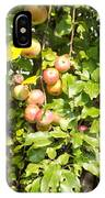 Lovely Apples On The Tree IPhone Case