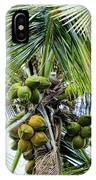 Lovely Bunch Of Coconuts IPhone Case