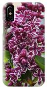 Lovely Lilacs IPhone Case