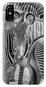 Lovely Stripes  7589bw IPhone Case