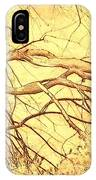 Lovely Twists In Nature IPhone Case