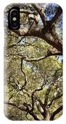 Low Angle View Of Trees In A Park IPhone Case