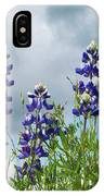 Lupines Against The Sky IPhone Case