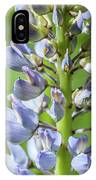 Lupinus Polyphyllus IPhone Case