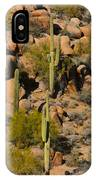 Lush Arizona Desert Landscape IPhone Case