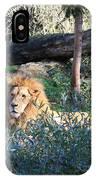 Lying Lion IPhone Case