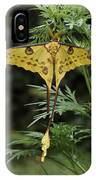 Madagascar Comet Moth IPhone Case