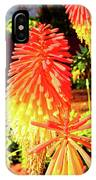 Madeira Funchal  Tritoma, Red Hot Poker, Torch Lily, Poker Plant IPhone Case