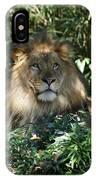 Magestic Lion IPhone Case