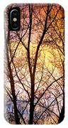 Magical Colorful Sunset Tree Silhouette IPhone Case