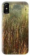 Magical Light On The Marsh IPhone Case