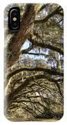 Magnificant Live Oak Trees Color IPhone Case