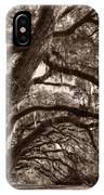 Magnificant Live Oak Trees  IPhone Case