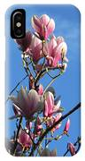 Magnolias And Blue Skies - Springtime In The Valley IPhone Case