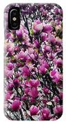Magnolias In Spring IPhone Case