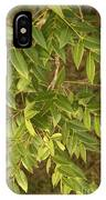 Mahogany Leaves On A Branch IPhone Case