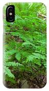 Maidenhair Ferns In Columbia River Gorge IPhone Case