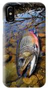 Maine Brookie IPhone Case