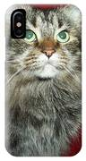 Maine Coon Portrait IPhone Case