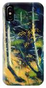 Maine Landscape 1919 IPhone Case