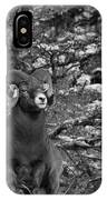 Majestic In Jasper Black And White IPhone Case