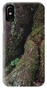 Majestic Tree Trunk IPhone Case