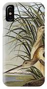 Male And Female Long Billed Curlew IPhone Case